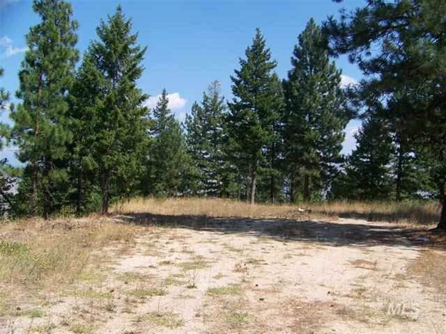 Lot 4 Wilderness Ridge, Boise, ID 83716 (MLS #98682723) :: Team One Group Real Estate