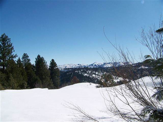 Lot 77 Boise Holcomb #3, Boise, ID 83716 (MLS #98682774) :: Jon Gosche Real Estate, LLC