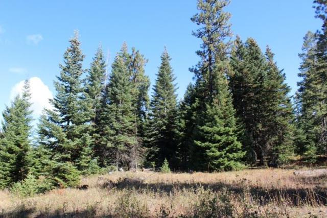 RP32N03W220100 Lewis County, Craigmont, ID 83543 (MLS #98682895) :: Jon Gosche Real Estate, LLC