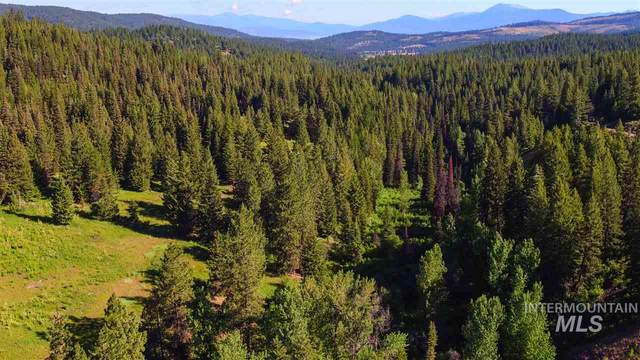 1 West Mountain Road, Mccall, ID 83638 (MLS #98683721) :: Full Sail Real Estate