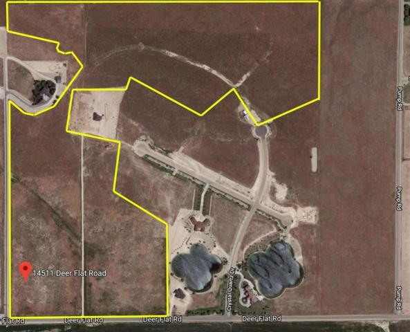14511 Deer Flat Rd, Nampa, ID 83686 (MLS #98685226) :: Juniper Realty Group