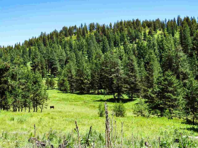 TBD Mud Creek Rd., New Meadows, ID 83654 (MLS #98685352) :: Boise River Realty