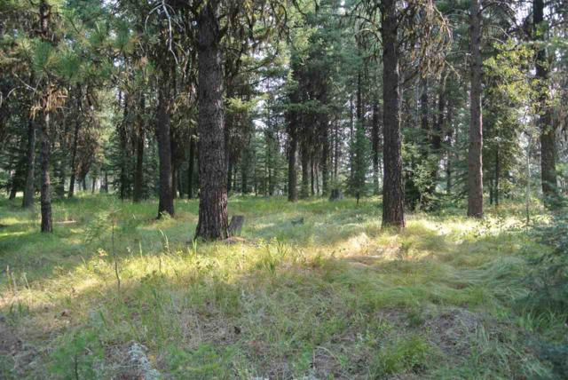 Lot 6 Blackhawk Lake Rd, Mccall, ID 83638 (MLS #98688760) :: Zuber Group