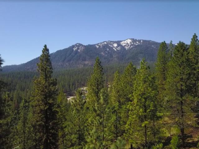 Lot 1 Sunny Ridge, Garden Valley, ID 83622 (MLS #98688881) :: Juniper Realty Group