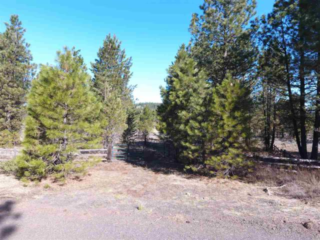 Property Near Rim Road, New Meadows, ID 83654 (MLS #98689474) :: Juniper Realty Group