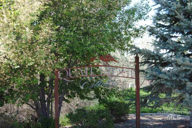 4094 Quail Ridge Drive, Twin Falls, ID 83301 (MLS #98691611) :: Juniper Realty Group