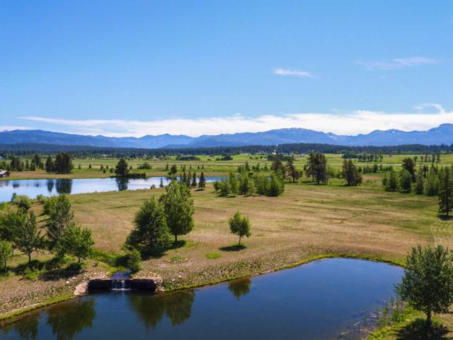 205 Rawhide Loop, Mccall, ID 83638 (MLS #98691843) :: Juniper Realty Group
