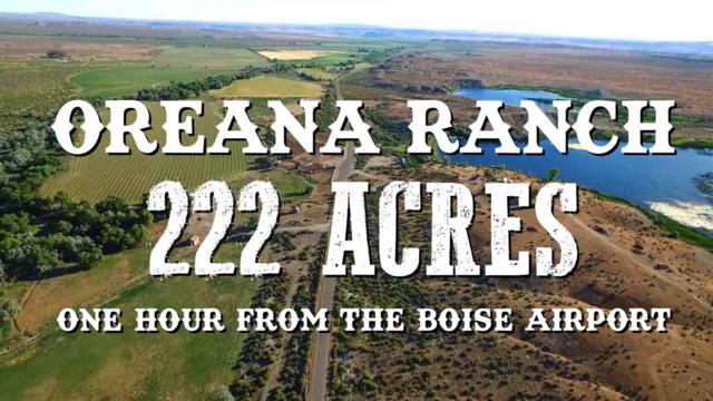 20726 Oreana Loop Rd., Oreana, ID 83650 (MLS #98693944) :: Team One Group Real Estate