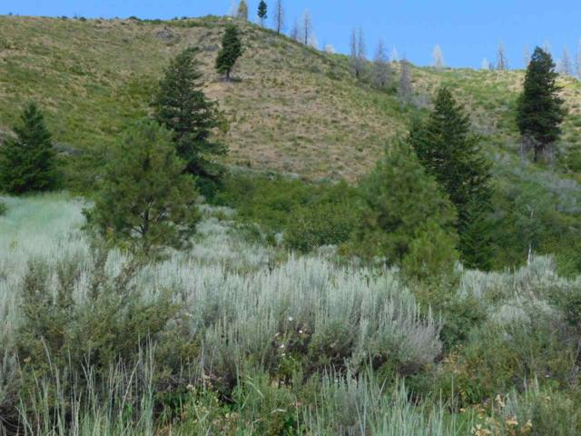 Lot 2 Block 1 Twin Pine Sub, Pine, ID 83647 (MLS #98698157) :: Full Sail Real Estate