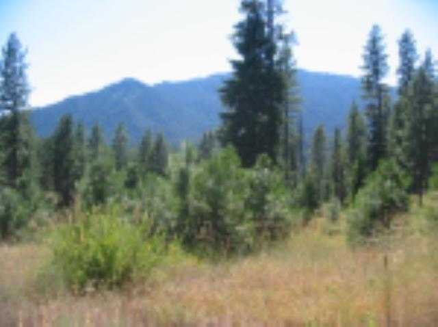 TBD Treetop Mtn. Estates, Garden Valley, ID 83622 (MLS #98699594) :: Boise River Realty