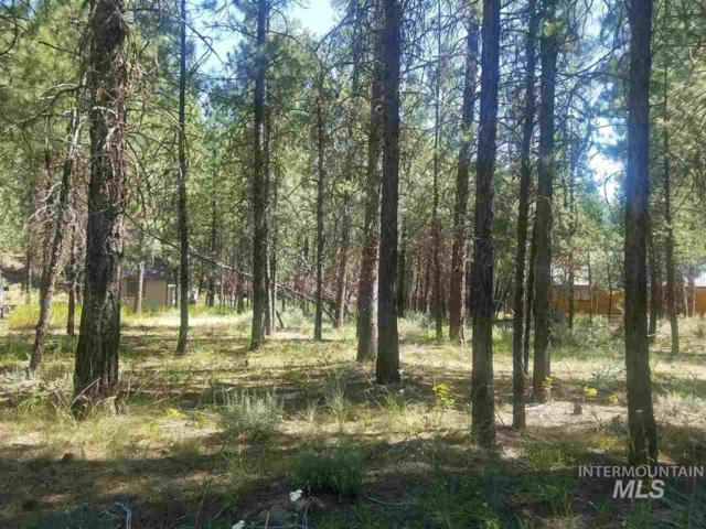 Lot 12 Scenic Circle, Lowman, ID 83637 (MLS #98700181) :: Alves Family Realty