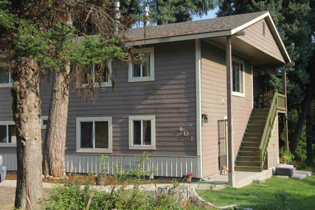 401 Rio Vista Blvd, Mccall, ID 83638 (MLS #98700706) :: Team One Group Real Estate