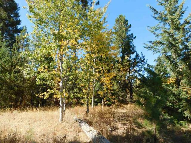 27 Windsong Way, Donnelly, ID 83615 (MLS #98708382) :: Full Sail Real Estate