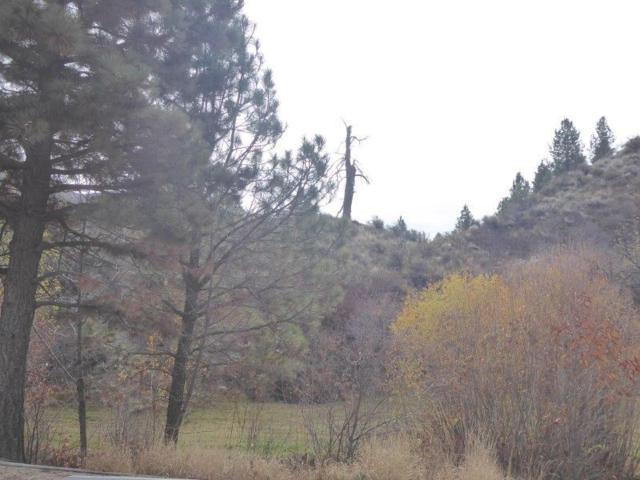 TBD Robie Creek Road, Boise, ID 83716 (MLS #98712356) :: Juniper Realty Group