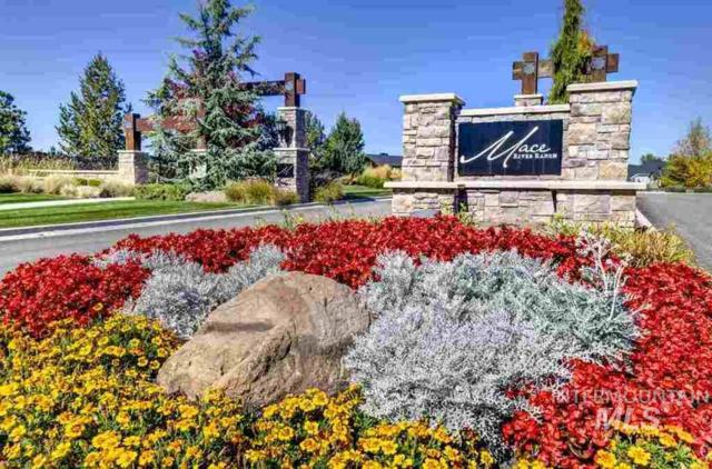 1010 W Water Vista St., Eagle, ID 83616 (MLS #98714701) :: Team One Group Real Estate