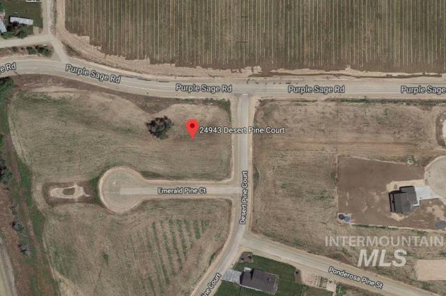 24943 Desert Pine Ct, Caldwell, ID 83607 (MLS #98715228) :: Jon Gosche Real Estate, LLC