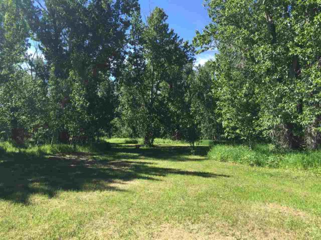 W Soldier Creek Rv Rd., Fairfield, ID 83327 (MLS #98718261) :: Juniper Realty Group