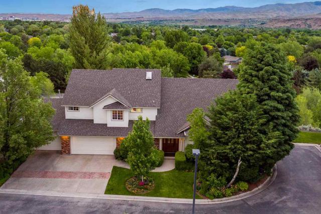 452 E Lake Rim Lane, Boise, ID 83716 (MLS #98722999) :: New View Team