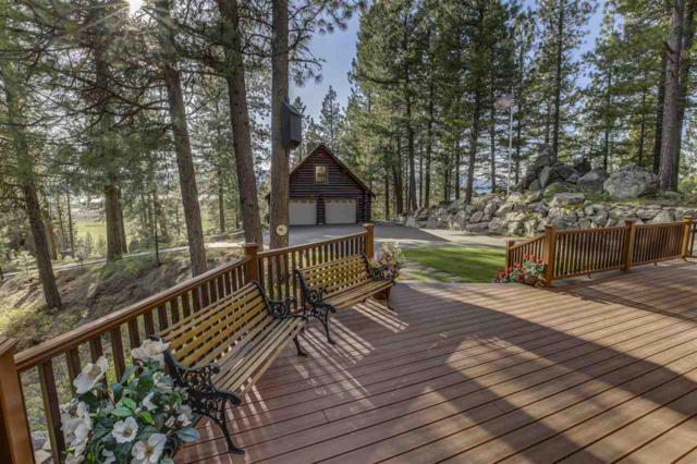 2 Truckee Trail, Cascade, ID 83611 (MLS #98729258) :: New View Team