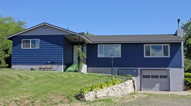 975 E Whitely Ave, Council, ID 83612 (MLS #98732721) :: Boise River Realty