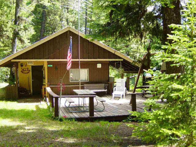 576 Noland Road, Cascade, ID 83611 (MLS #98735088) :: Juniper Realty Group