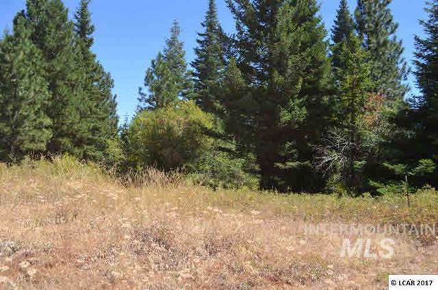 102 Kyle Road, Anatone, WA 99401 (MLS #98735129) :: Team One Group Real Estate