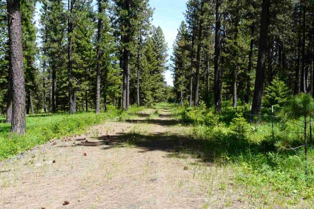 NNA Cloverland Rd, Asotin, WA 99402 (MLS #98735658) :: Boise River Realty