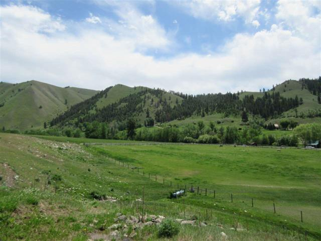 Fourth Of July Creek Road, North Fork, ID 83466 (MLS #98736182) :: Epic Realty