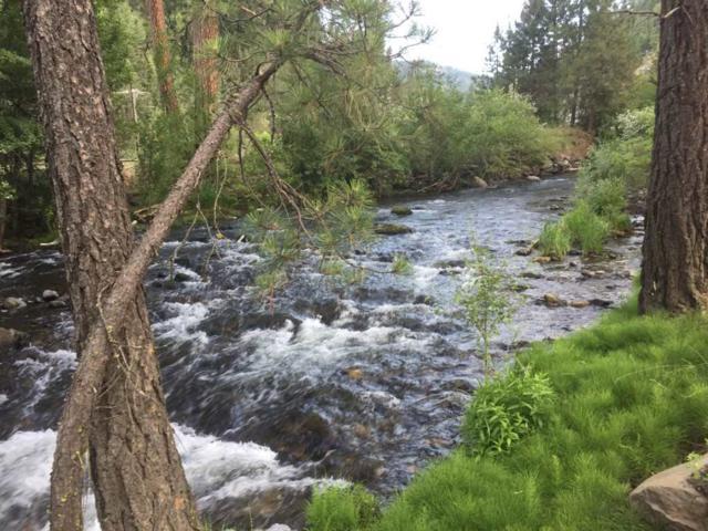 23 Hillman Basin Rd, New Meadows, ID 83654 (MLS #98736192) :: Boise River Realty