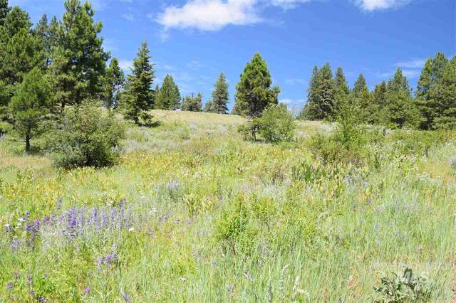 TBD N King Hill Road, Indian Valley, ID 83632 (MLS #98738322) :: Boise River Realty