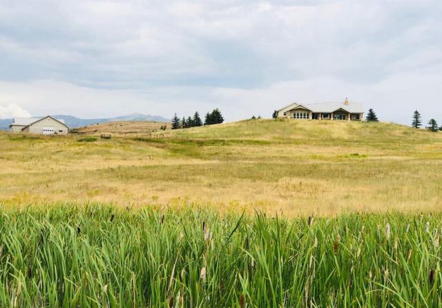 2346 Meadows Lane, Indian Valley, ID 83632 (MLS #98739784) :: Jon Gosche Real Estate, LLC