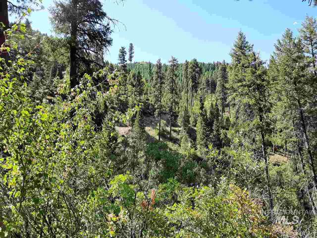 Archie Creek, Lowman, ID 83637 (MLS #98739863) :: Boise River Realty
