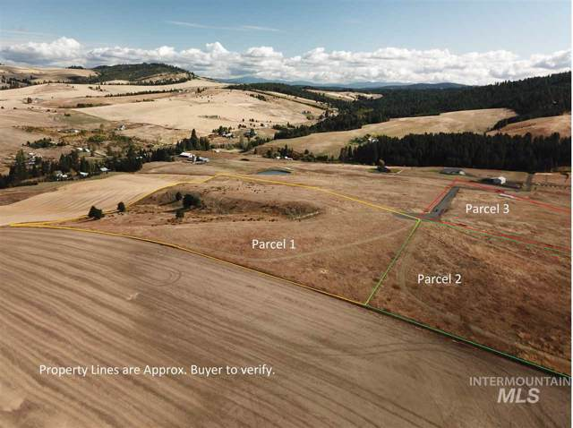 000 Saddle Ridge Parcel 1, Viola, ID 83872 (MLS #98746429) :: Story Real Estate