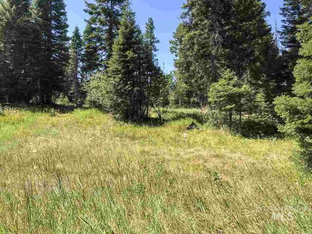 TBD Clements Rd, Mccall, ID 83638 (MLS #98748915) :: Silvercreek Realty Group