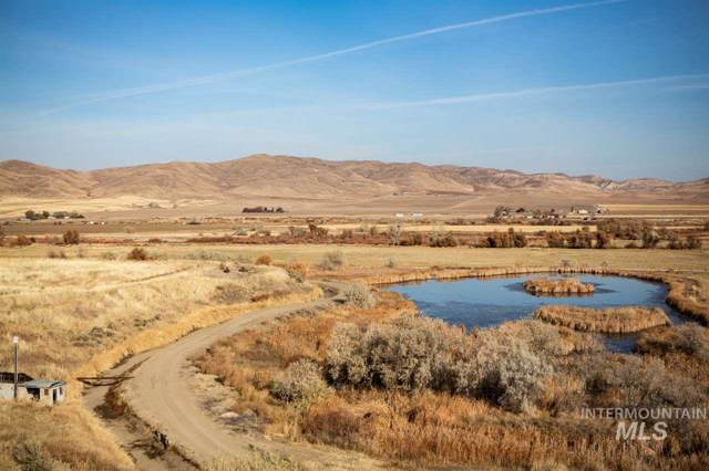 2219 Weiser River Rd, Weiser, ID 83672 (MLS #98749282) :: Team One Group Real Estate
