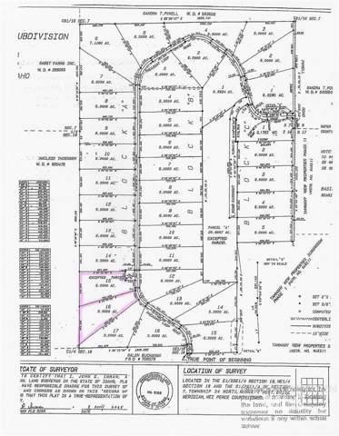 16A Pheasant Loop Rd, Lewiston, ID 83501 (MLS #98753292) :: Juniper Realty Group