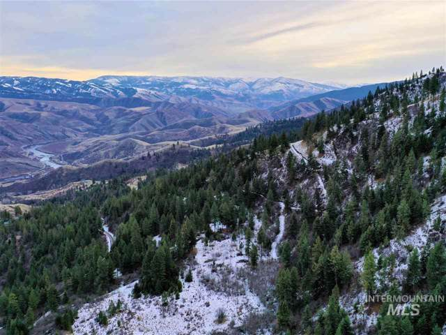 LOT 63 Hammer Creek Rd, White Bird, ID 83554 (MLS #98753584) :: Michael Ryan Real Estate