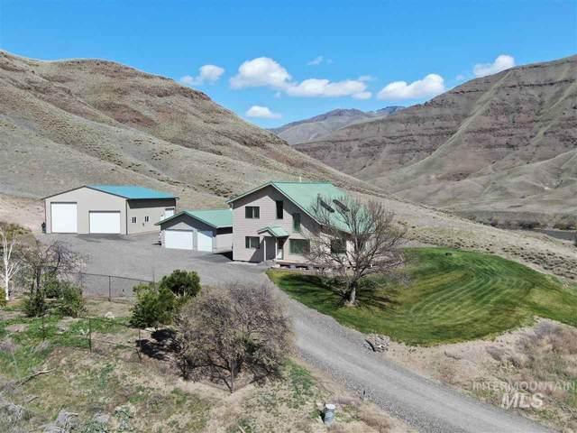39280 Snake River Rd, Asotin, WA 99402 (MLS #98754046) :: Team One Group Real Estate