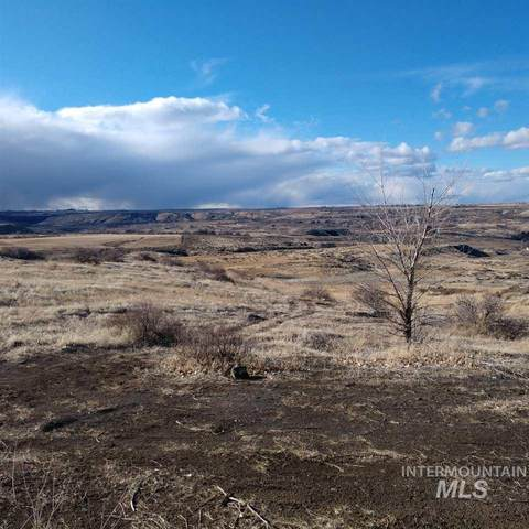 4505 Snake River Mesa View Road, Buhl, ID 83316 (MLS #98754189) :: Full Sail Real Estate