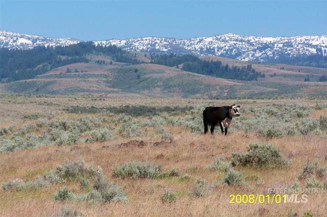 TBD Indian Valley Road, Indian Valley, ID 83632 (MLS #98756964) :: Boise River Realty
