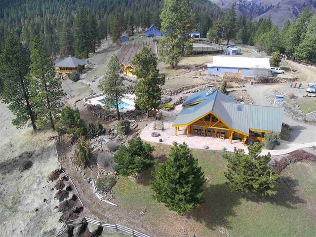 209 Big Canyon Rd, White Bird, ID 83554 (MLS #98761329) :: Story Real Estate
