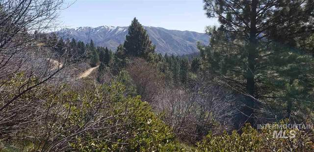 Lot 66 Blue Grouse Way, Boise, ID 83716 (MLS #98762351) :: New View Team