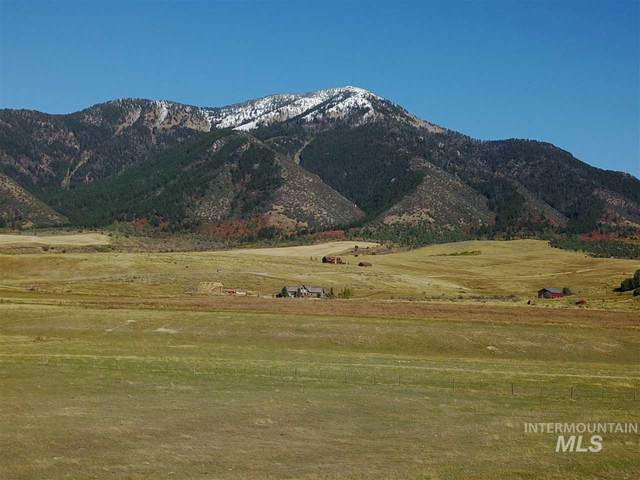355 E Double R Dr, Irwin, ID 83428 (MLS #98763159) :: Full Sail Real Estate