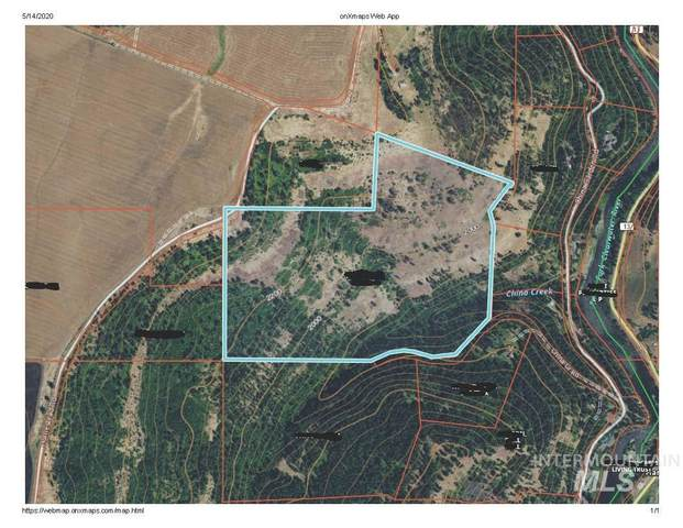 TBD Wagon Rd., Harpster, ID 83552 (MLS #98766796) :: Boise River Realty