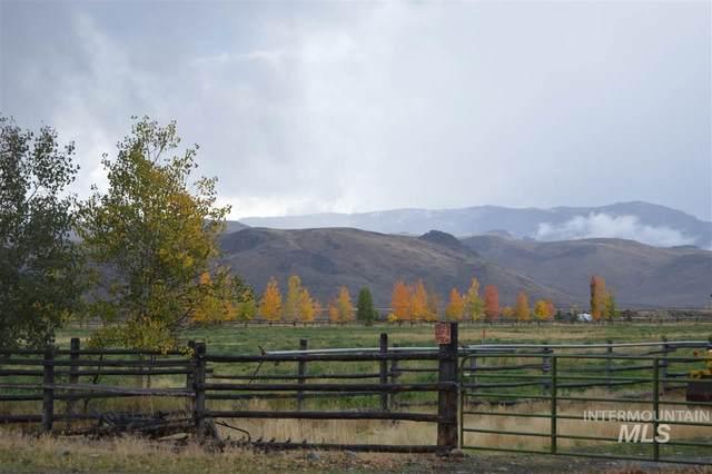 5893 Remington Ridge Rd, Mackay, ID 83251 (MLS #98767208) :: Team One Group Real Estate