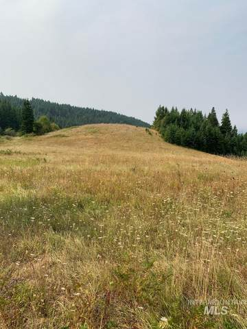 Lot 17 Shenandoah Acres, Kamiah, ID 83536 (MLS #98769788) :: Silvercreek Realty Group
