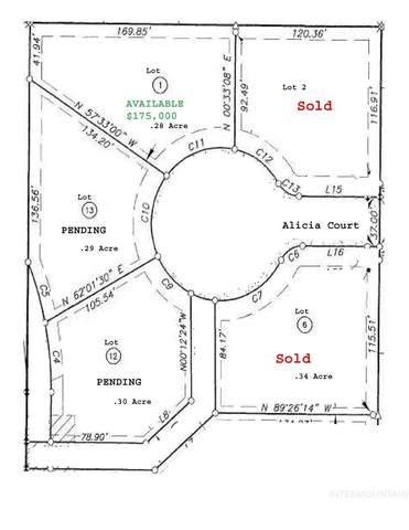 Lot 1 Alicia Court, Meridian, ID 83642 (MLS #98770187) :: Navigate Real Estate