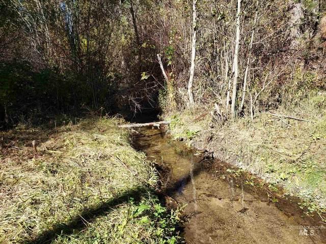 TBD Robie Creek Rd, Boise, ID 83716 (MLS #98779693) :: New View Team