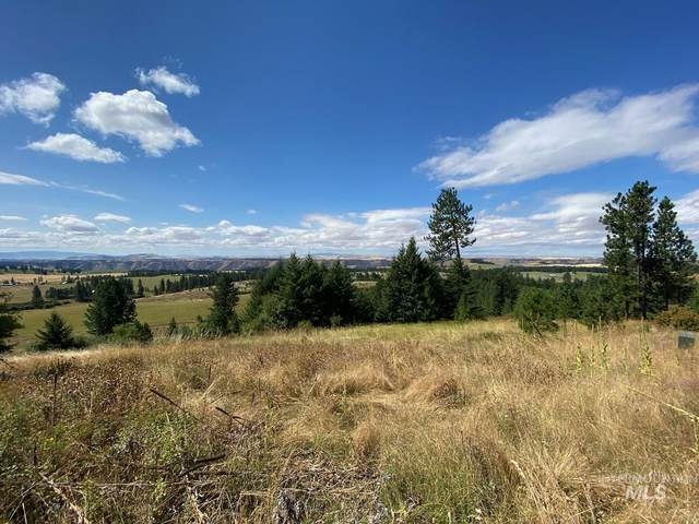 TBD Simlar Rd Parcel 1, Kamiah, ID 83536 (MLS #98780970) :: New View Team