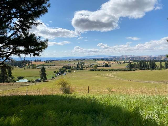 TBD Simlar Rd Parcel 2, Kamiah, ID 83536 (MLS #98780972) :: New View Team